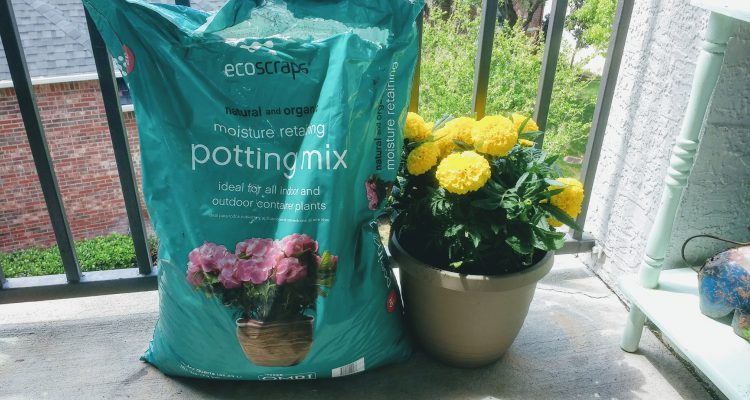 Ecoscraps for Your Spring Garden!